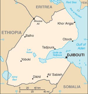 djibouti's and East Africa's top car importer exporter